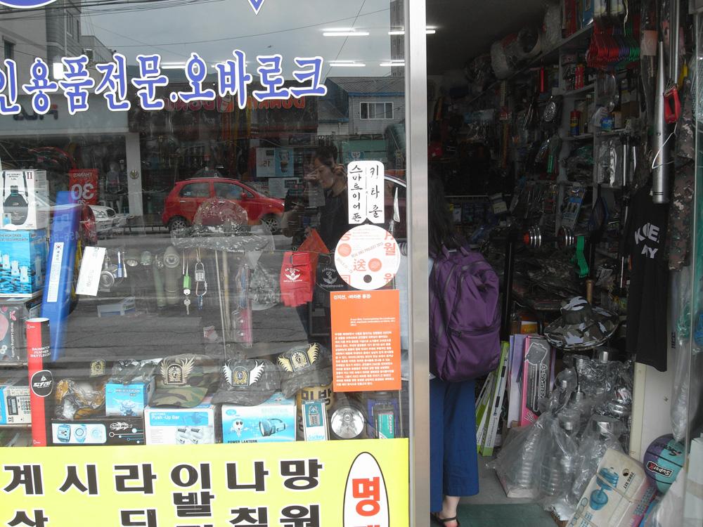 Pilseung Military Supplies,JI-Sun Shin, Contemplating the Landscapes